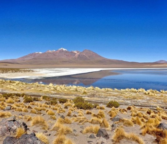 Bolivian Desert | Bolivia Travel Tips: Everything Backpackers Need To Know Before Going
