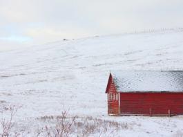 Alberta travel tips