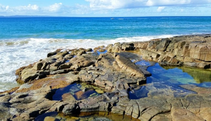 Exploring the rock pools at Noosa National Park