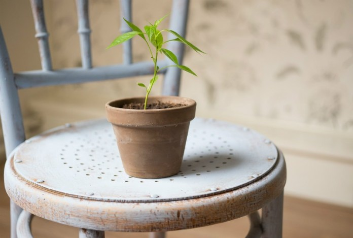 Reasons to start a blog: grow in many aspects of your life