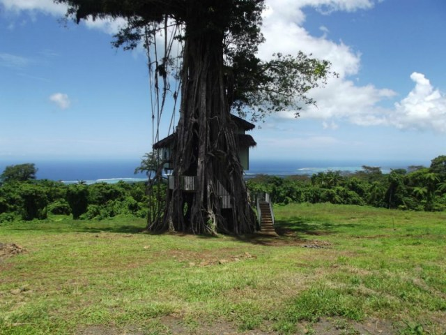 Treehouse hotels: Lodge Lupe Sina Treesort