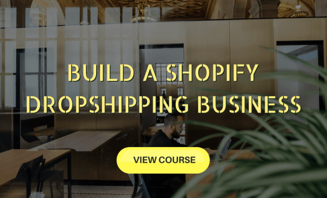 Build a Shopify Dropshipping Business Course - Top Travel Job Courses Which Will Teach You How To Work From Anywhere