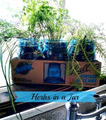 Herbs in a Vintage Blue Ball Jar (Kitchen Update 4)
