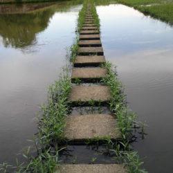stone-walking-path-Hematite-lake