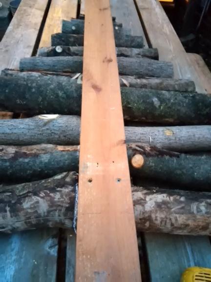 log-tree