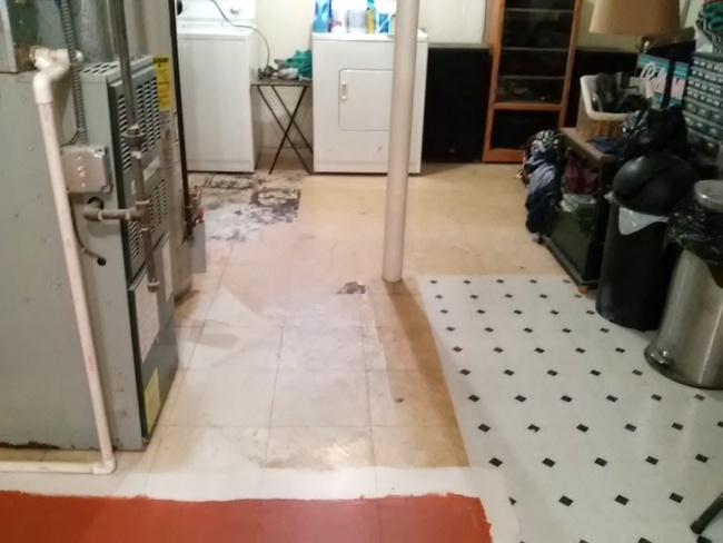 painting-vinyl-basent-floor-http://www.stowandtellu.com