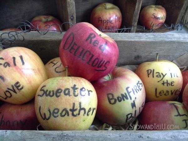 apples-edible-writer-http://stowandtellu.com