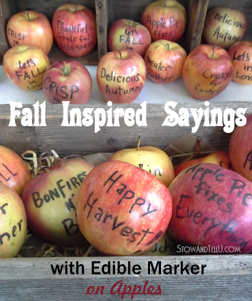 fall-inspired-sayings-with-edible-food-writer-on-apples