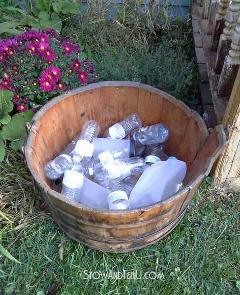 container gardening trick