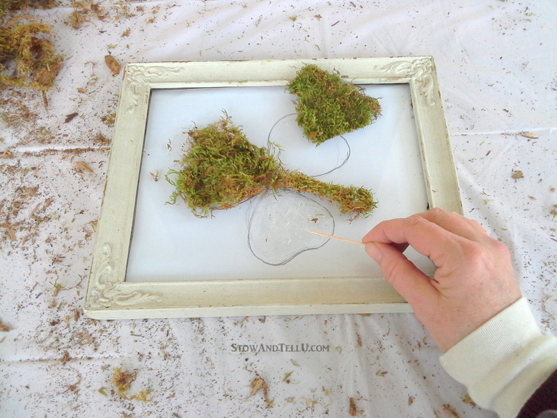 575862c45aa Use the glass and frame only from a vintage frame to make a framed moss  shamrock
