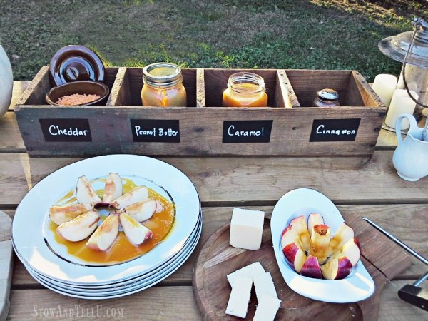fall-party-apple-bar|stowandtellu