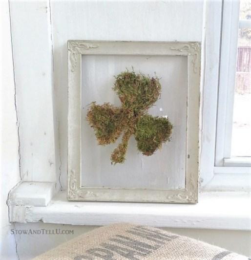 10 Best diy reused items - floating glass framed moss shamrock | StowandTellU.com