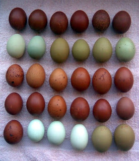 Copper and green decor inspiration - green and copper eggs - A Charmed Life