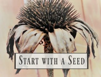 start-with-a-seed-growing-series-2-garden-planning-printable | stowandtellu.com