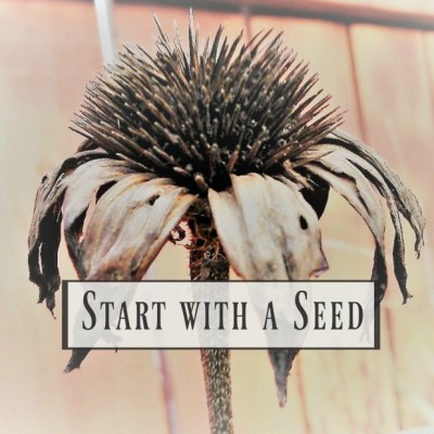 Start with a Seed Series (part 2): Garden Planning Printable