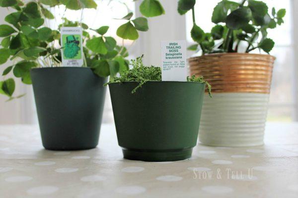 copper-green-planters