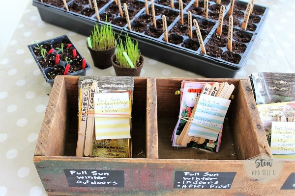 Seed packets organizing bin   Stowandtellu.com
