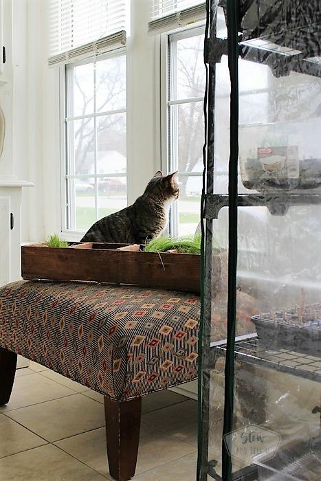 Small Home Sun Porch Furniture Rearrange | Stowandtellu