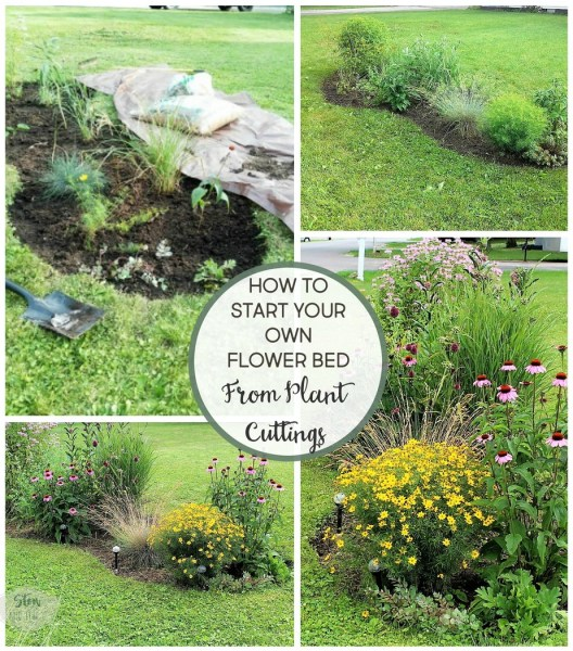 6 Tips for starting a diy flower bed   diy flower bed makeover using plant cuttings   stowandtellu.com