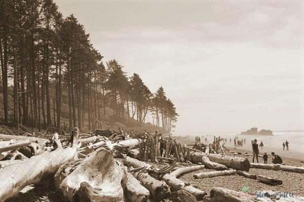 ruby-beach-kalaloch-washington