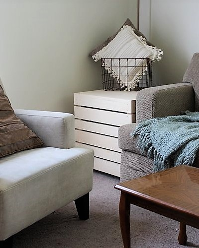 thrifted-space-savers-living-room
