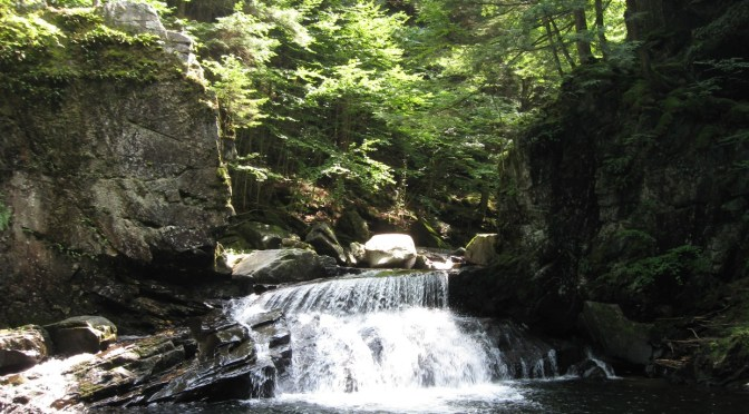 Terrill Gorge, Another World