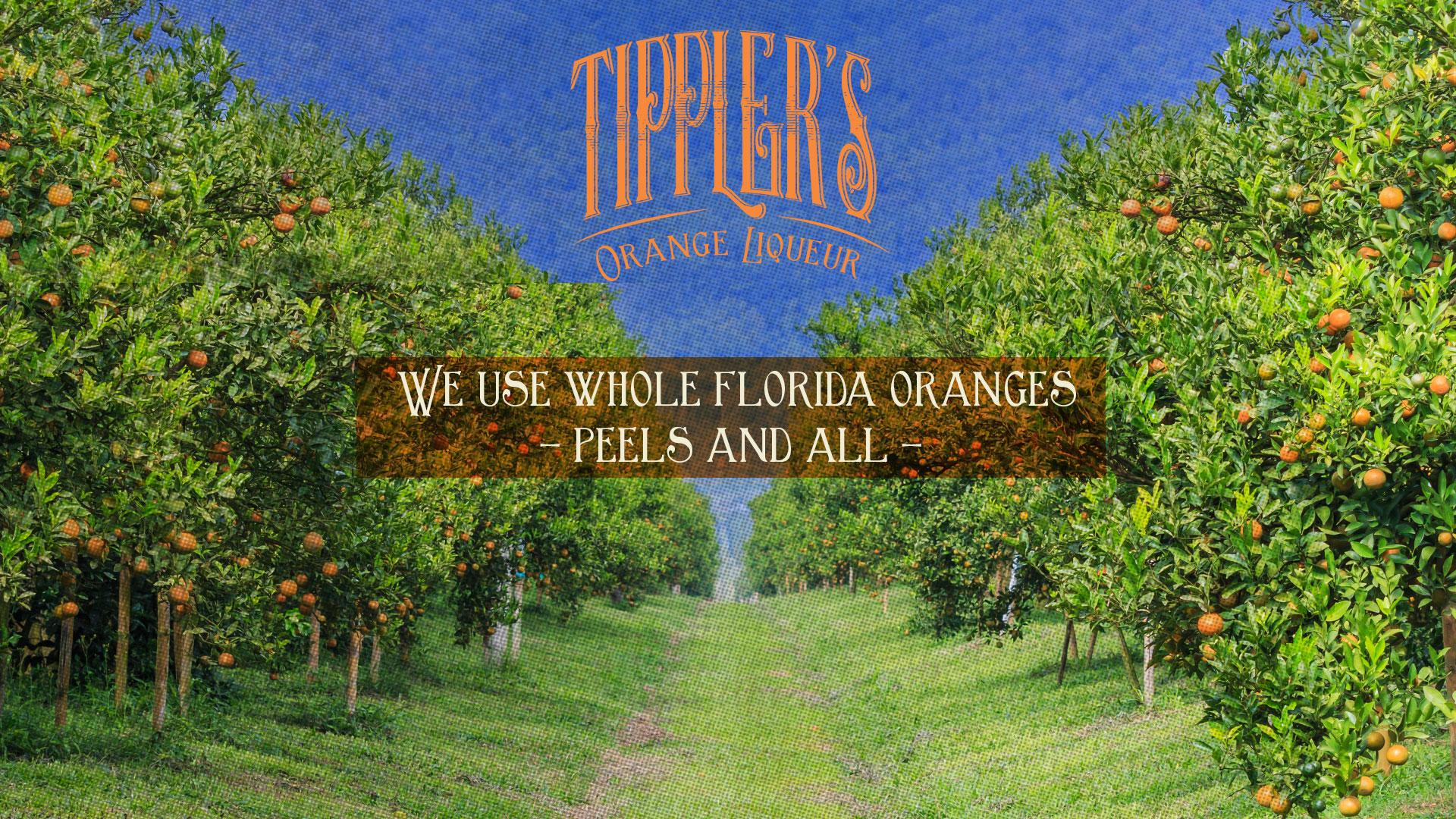 Tipplers Orange Liqueur