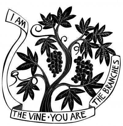VINES-BRANCHES