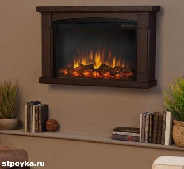 Электрокамины с эффектом живого огня дешево цена газово-дровяной камин для воздушного отопления