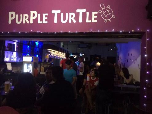PurPle TurTle 2
