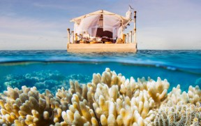 Airbnb Invites You to Spend a Night at the Great Barrier Reef