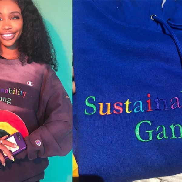 """Puck Flastic"": SZA's eco-friendly merch gets tough on non-sustainability"