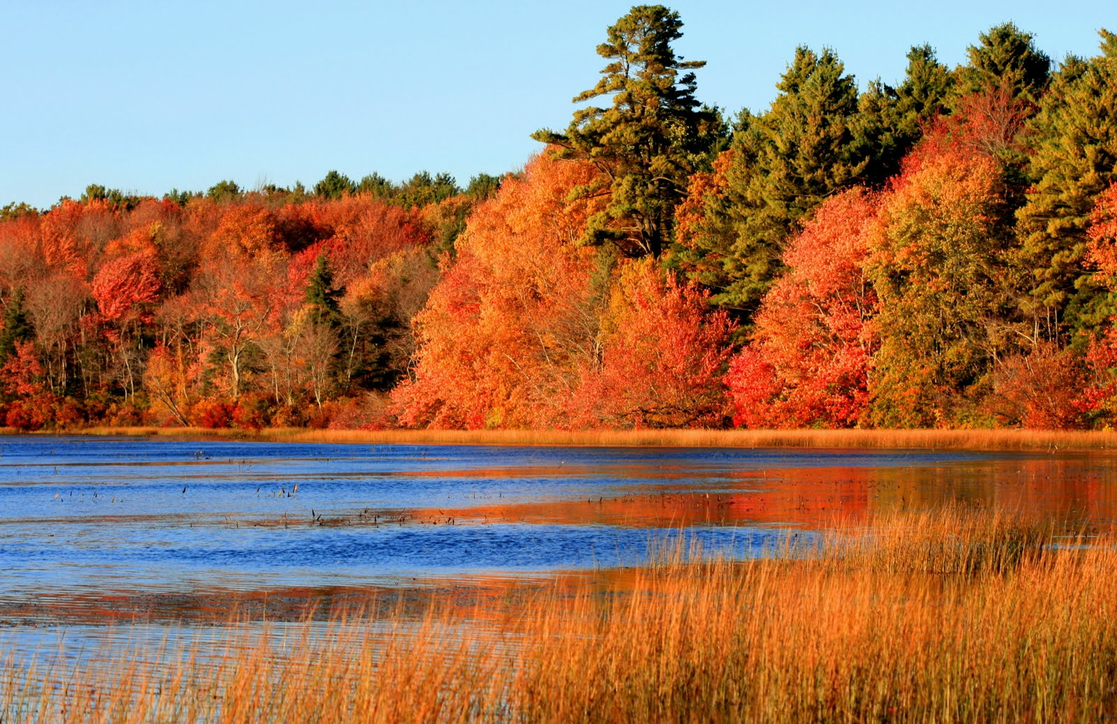 Colorful Fall Scene Wallpaper Music For Fall Time The Seasons Are Changing Straight