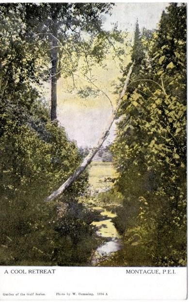 #1816 A Cool Retreat Montague, P.E.I.