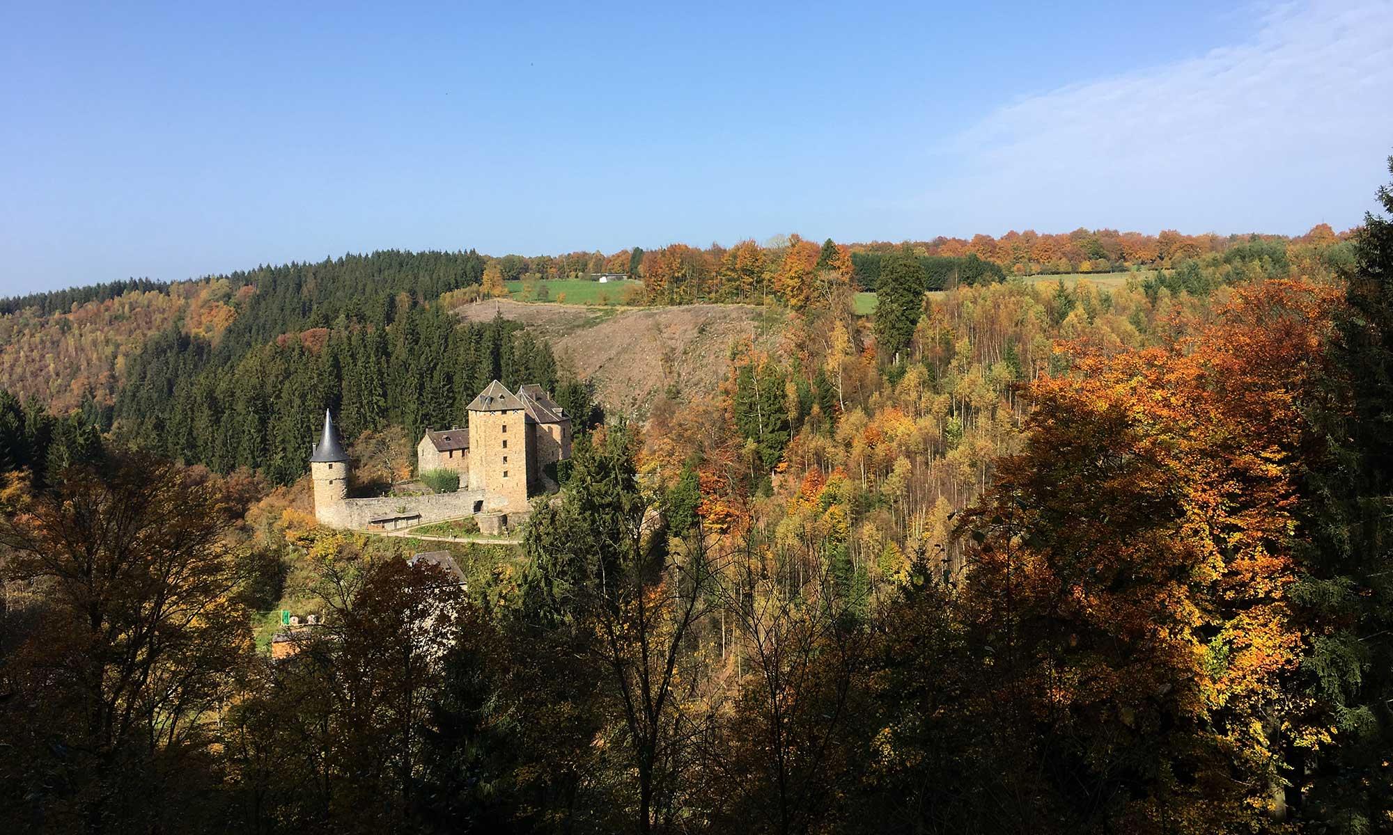 Burg Rheinhardstein