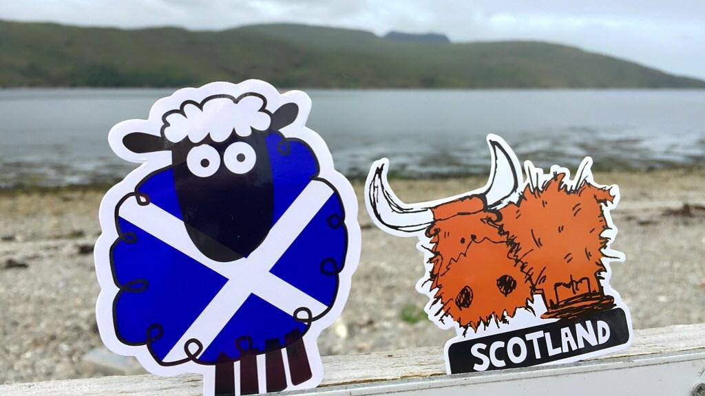 aufkleber21 1 - Schottland Schaf versus Highland Harry