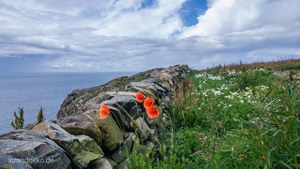 20160713 07 - Schottland V - Süden