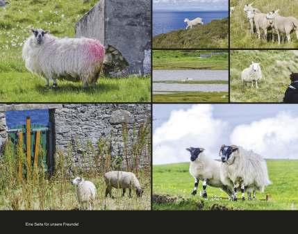 Fotobuch_Schottland_Seite_73