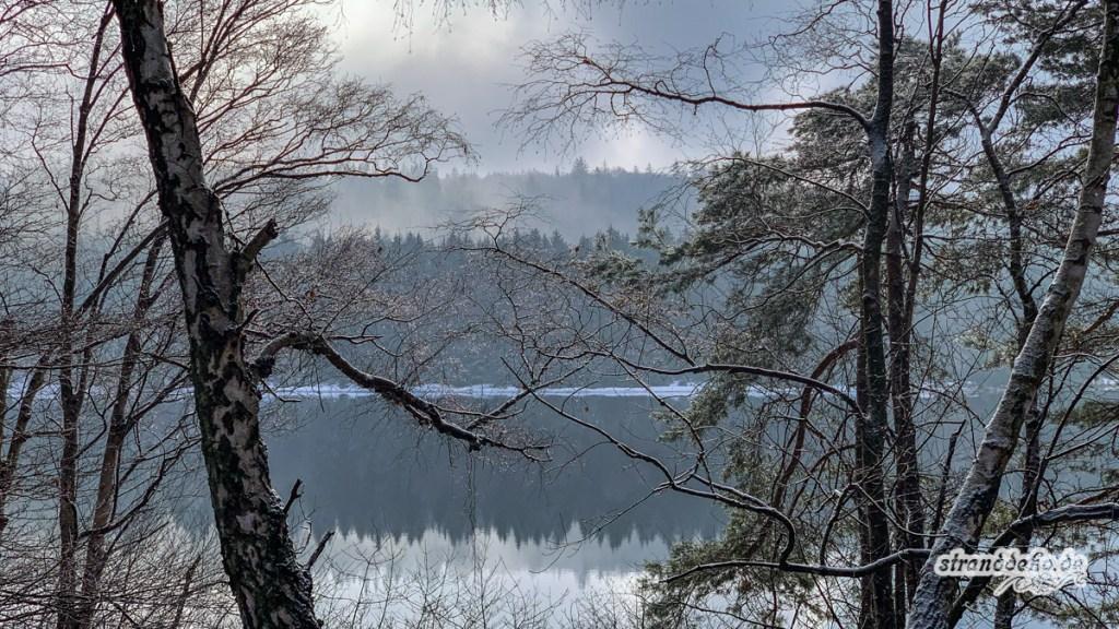 190203 Eifel Schnee 138 1024x576 - Ein Versuch von Winter