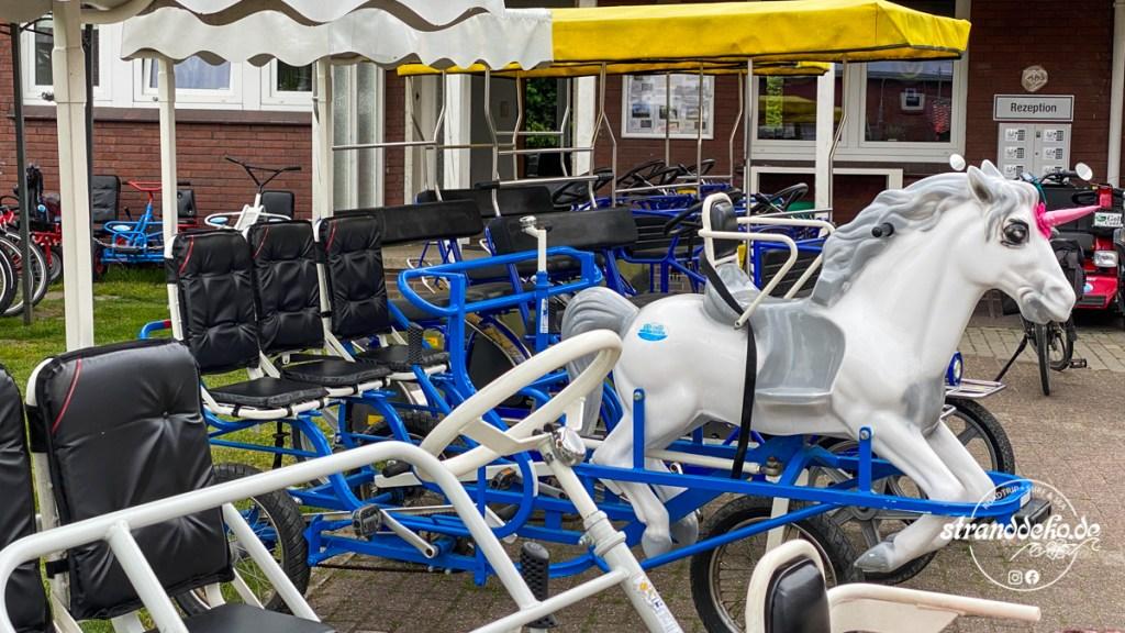 200516 NORDDEUTSCHLAND 607 1024x576 - Wohnmobil-Deutschlandtour: Dangast und Jork