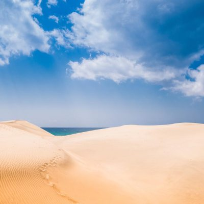 The great Dunas de Maspalomas