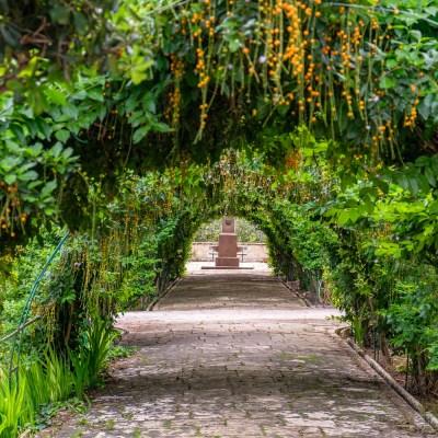 San Anton Gardens