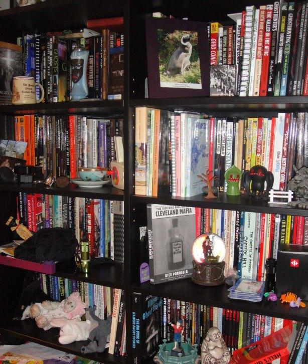 bookshelf4