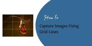 capture Images Using Grid Lines