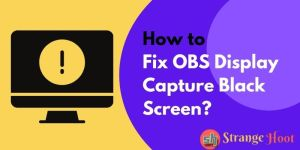 How to Fix OBS Display Capture Black Screen