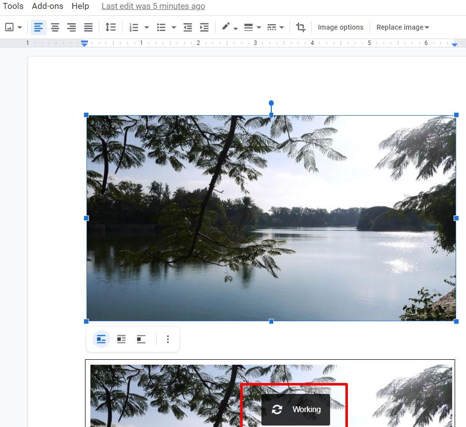 insert picture in google doc