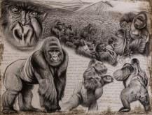 Virunga gorille de montagne