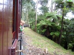 Tourism is Big - this is the Puffing Billy train in the Dandenongs