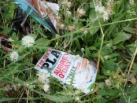 Discarded Porn Mag