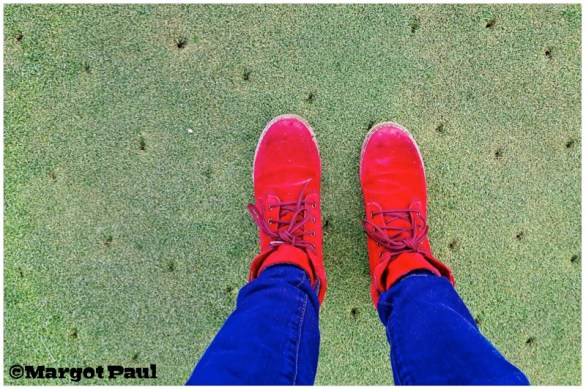 Red Shoe project_03